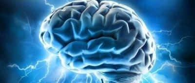 Neuroplasticita a neurogeneze