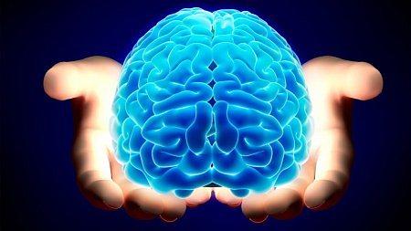 mozek na dlani