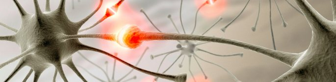 synapse neuronu
