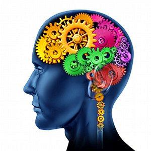 Fungovanie mozgu