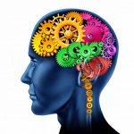 mozek jako stroj
