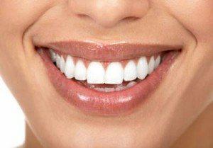 usmev